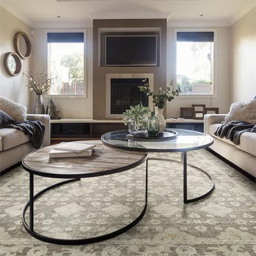Fabrica Transitional Rugs